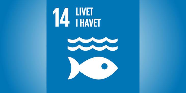 Verdensmål 14 på blå baggrund